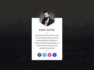 Profile Card