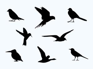 Free Birds Silhouette