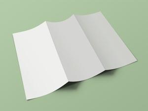 Front & Back Tri Fold Brochure Mockup