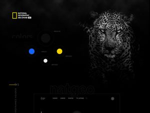National Geographic Website Template Redesign